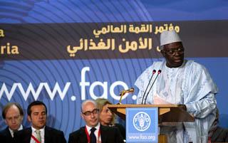 L'intervento del direttore generale, Jacques Diouf