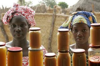 Donne che vendono conserve a Bantantinnting